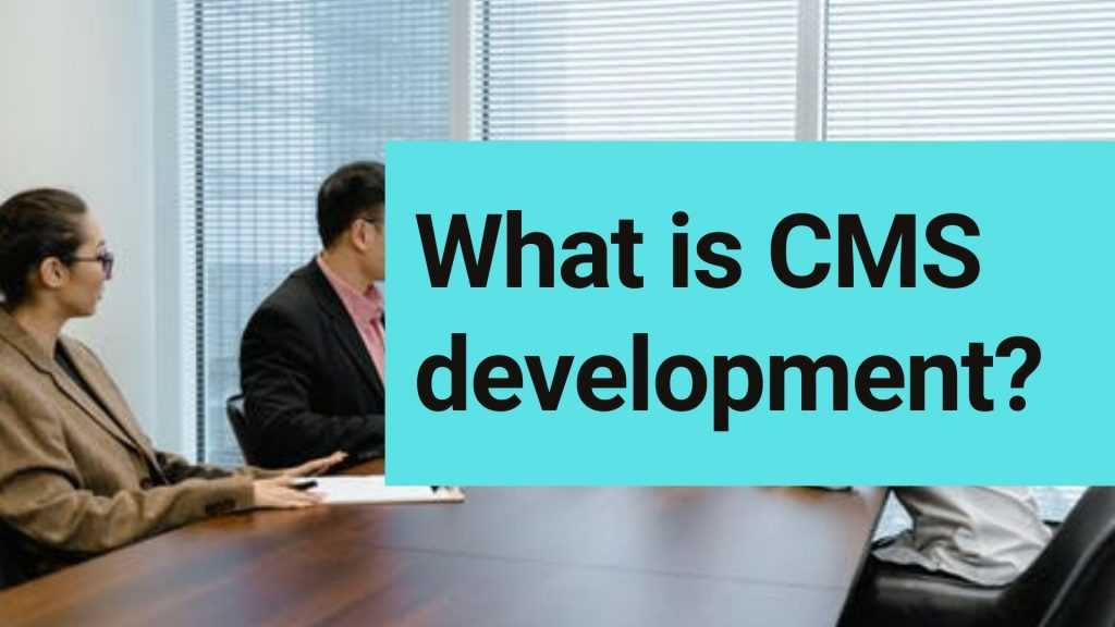 What is CMS development?